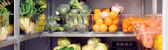 I fattori che influenzano la qualità alimentare nelle celle frigo